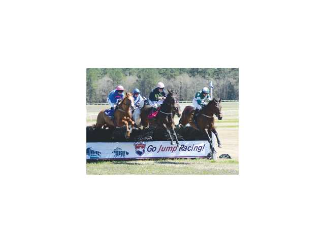 Carolina Cup tickets, parking spaces on sale for March 30, 2019 race day