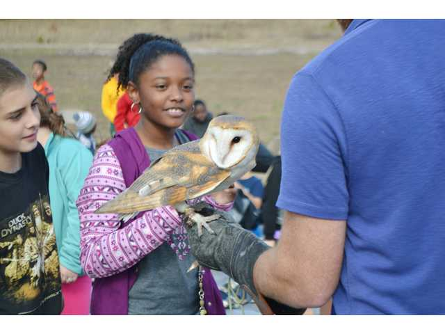 Students meet owls
