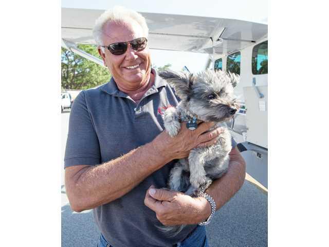 Dogs rescued in Houston arrive in Kershaw County