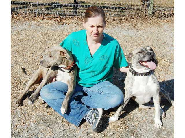 Walter M. Crowe Animal Shelter celebrates anniversary