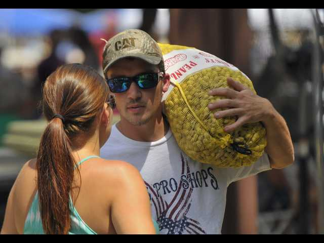 Brooklet readies for 2016 Peanut Festival