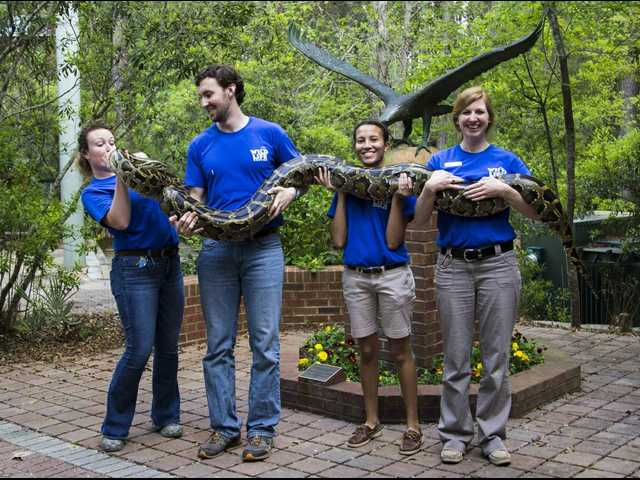 GSU celebrates 20th anniversary of Center for Wildlife Education