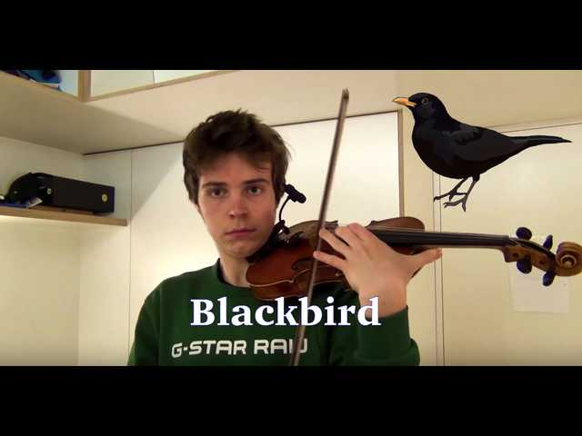The Clean Cut: YouTuber makes impressive animal sounds on violin