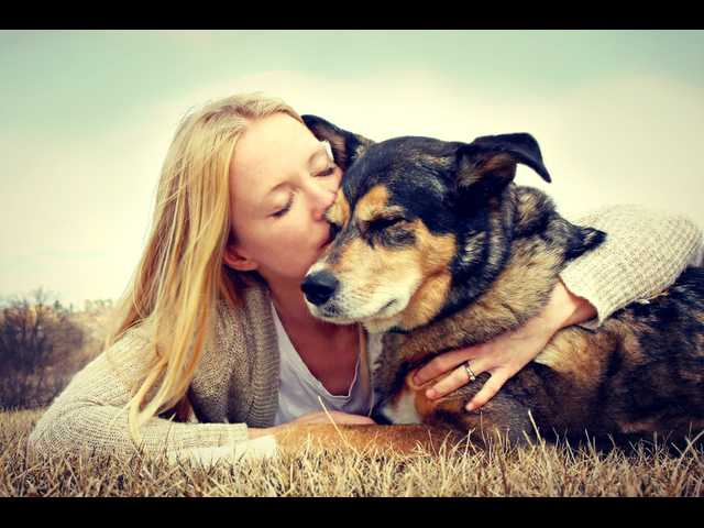 Pet ownership holds health benefits, but is it right for you?