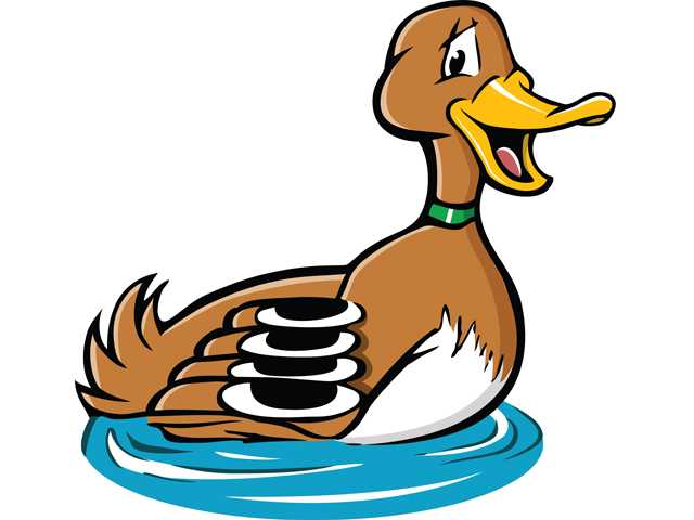 Weird News: Mass. home intruder turns out to be a duck