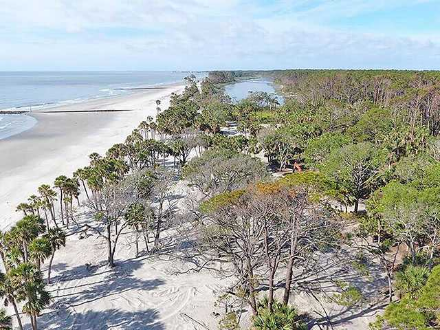 Hunting Island is 'wealthy' in animal, plant life