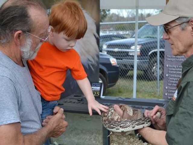 50th annual Rattlesnake & Wildlife Festival in Hagan March 11-12
