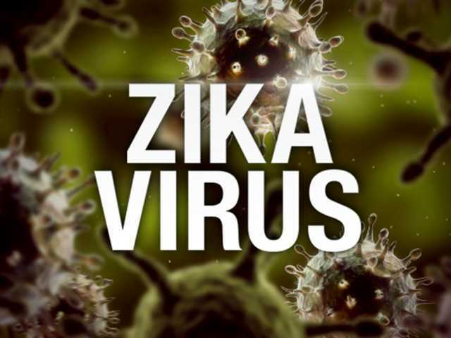 Officials: Zika not a local danger
