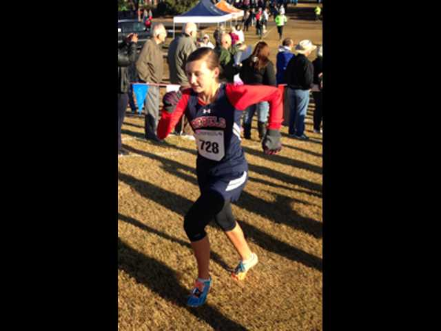 Van Sickle takes 48th, SEHS girls finish 26th at state meet