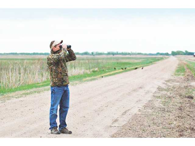 Above: A bird watcher scans the horizon at Cheyenne Bottoms. The wetlands is a popular stop on the Wetlands and Wildlife National Scenic Byway.  The Wetlands and Wildlife National Scenic Byway runs 77 miles through Barton and Stafford counties.