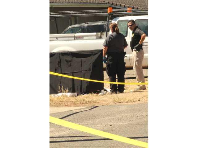 Fatal Stabbing In Rural Oakdale