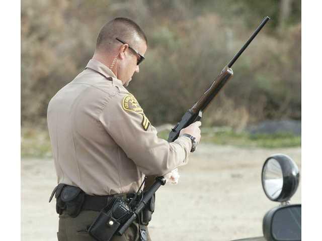 Police arrest lone gunman on a grassy knoll