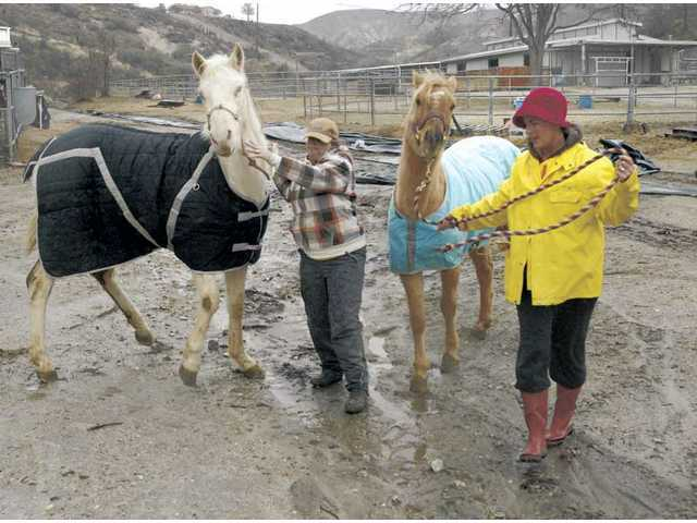 Acton residents Sharon Marshall, left, and Victoria Pique move two of Marshall's 18 horses to a corral out of the mandatory evacuation area on Wednesday. The evacuation was ordered due to expected heavy rain in areas burned by the 2009 Station Fire.