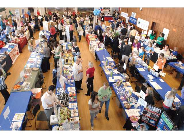 Wellness fair draws a crowd