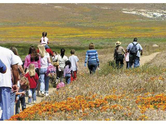 A park ranger leads visitors along one of the trails in the state's only poppy reserve, near Lancaster.
