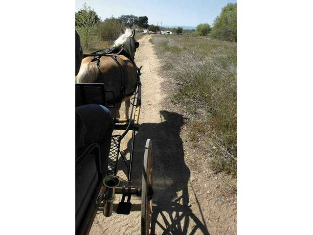 The Pierces drive their carriage along a dirt path near Placerita Canyon.