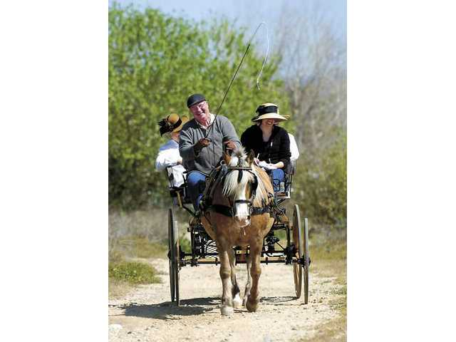 Van Pierce takes local residents on a carriage ride near Placerita Canyon on Saturday. Van and his wife, Patty, now compete in carriage driving contests.