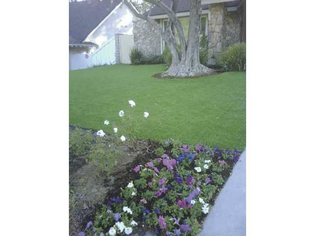 After: Shawn Green's relandscaped front yard sports an always emerald green synthetic grass lawn.