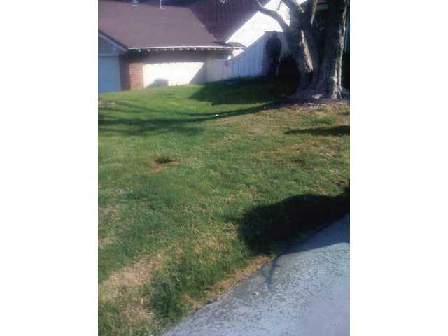Before: Shawn Green's home before he installed Top Cut synthetic grass in the front yard of his Valencia home.