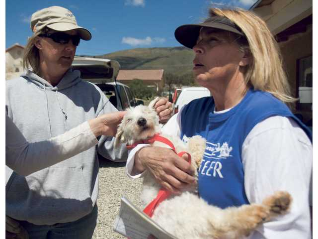 The Brittany Foundation's founder Nancy Anderson, far right, and volunteer Kristina McDonald, center, tend to Pam, a two-year old rescued Terrier mix recovering from spay surgery.