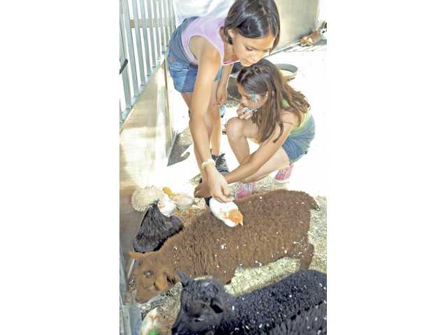Ten-year-olds Rylee Giles,left, and Lauren Arriaga visit the Giddy Up Ranch petting zoo at the Pet Expo in the College of the Canyons parking lot on Saturday.