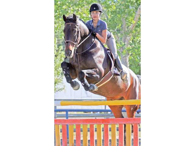 Equestrian sports: Stable partnership