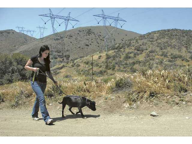 Jessica Frederick takes Dilliger for a walk in the hills around the Villalobos Rescue Center.