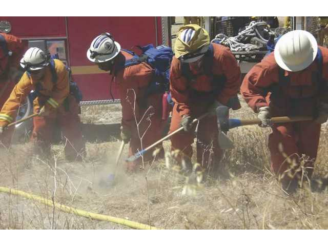Camp Crews, a group of low-risk inmates, help out firefighters by clearing brush in Monday's training drill at Disney Ranch in Placerita Canyon. Clearing out brush and shrubs helps firefighters have a clear path to lay their hoses while fighting fires.