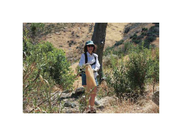 Community Hiking Club member Annette Stiefbold picks up trash along the Piru Creek Sunday morning.