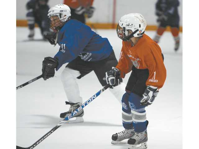 Dozens of area kids were able to receive valuable instruction on the game as well as meet several NHL players.