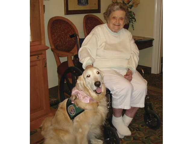 Laci the therapy dog passed away June 12.