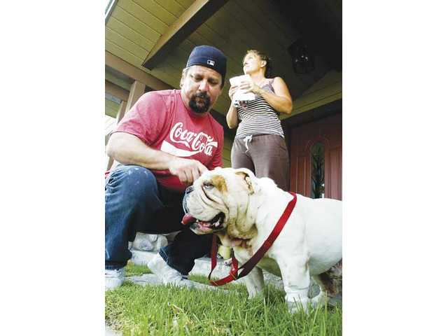 Rodney Powers, left, and Christina Powers, stand outside their Canyon Country home recounting their dog Diesel's morning. Diesel, an English bulldog, was attacked by a wild animal Wednesday morning.