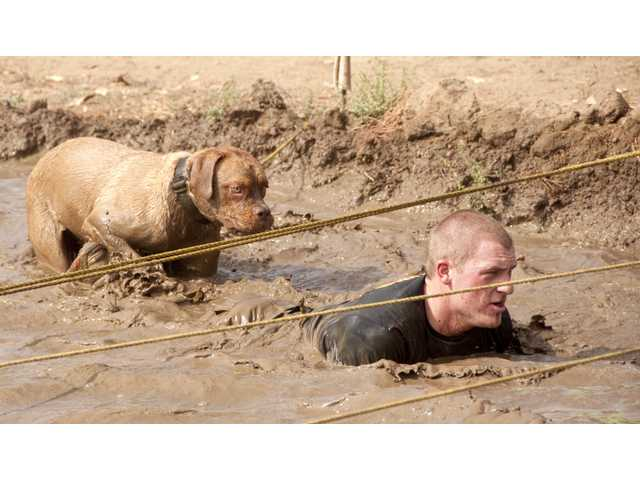Palmdale Sheriff's Deputy Zach Marshall and Tank navigate through the mud pit Sunday morning at the 14th annual Mud Run in Castaic.