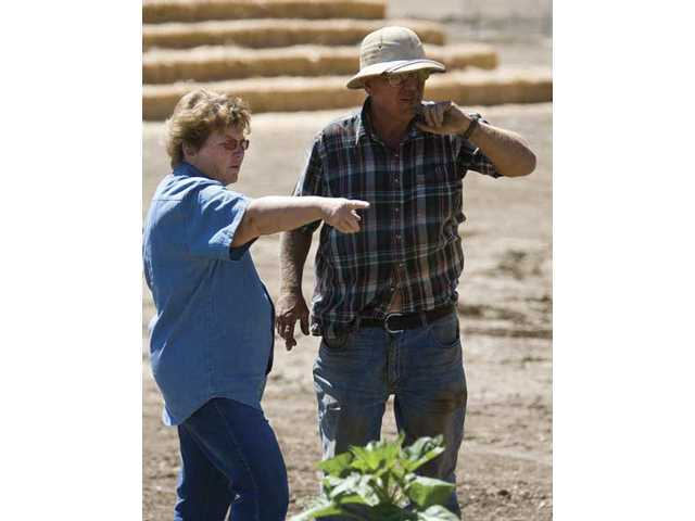 Joann and Bob Lombardi discuss where things will be planted and arranged this year.