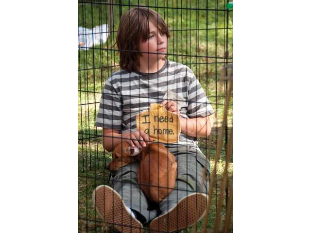 Castaic Middle School student Kevin Sheldon, 12, dramatizes a pet's need for a home by putting himself in a dog kennel Sunday at the Bow-Wows & Meows Pet Fair at William S. Hart Park.  Sheldon spent most of the day volunteering for the Castaic Animal Shelter's booth.