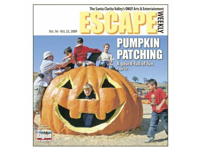 A wide range of pumpkin patch activities await you locally, and Escape clues you in.