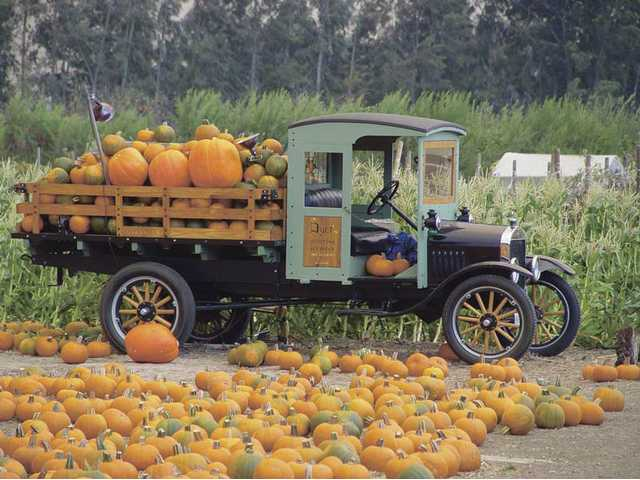 Old time transportation at the Faulkner Farm Pumpkin Patch in Santa Paula. Picking out your pumpkins is just part of the fun at local pumpkin patches and those a little farther out of the SCV.