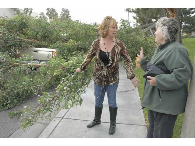 Deborah Sterenbuch, left, of Saugus stopped to assist Marie Edmistron, right, who was driving the truck when the tree limb fell. A high winds warning remains in effect for today.