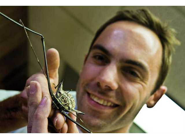 Ian Swift, who is leaving the Placerita Canyon Nature Center for a position in San Francisco, holds one of his harlequin beetles from Costa Rica.