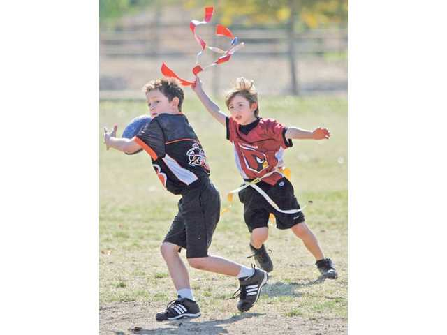 Hunter Pack, of the Cardinals, takes the flag off the Bengals quarterback before he can make a pass during their Super Bowl game Saturday at Central Park. Divisional championship games were held for teams in four different age groups ranging from 9 to 14.