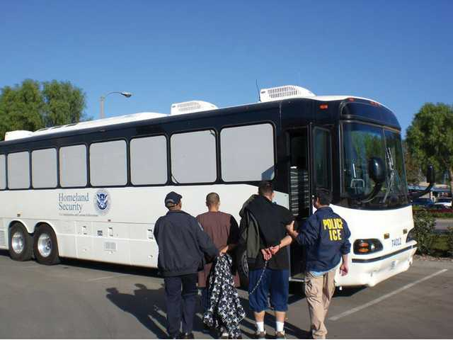 Immigration and Customs Enforcement agents lead two handcuffed alleged gang members onto a bus Wednesday morning, after officials arrested 21 people in Canyon Country and Newhall, 15 of them for immigration violations.