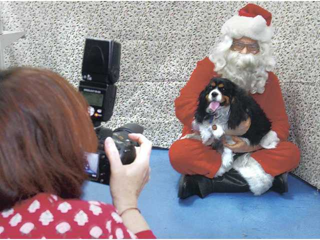 Zoe-Anne Fitzhugh, left, takes a photo of 3-year-old Jackson, a Cavalier King Charles Spaniel, and Allan Cameron dressed as Santa at Pet Supply in Saugus on Saturday.