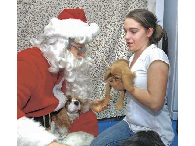 Fido can get a photo with Santa, too: Pet Assistance Foundation offers holiday pet photos