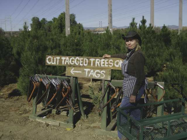 Nancy Roatcap is the owner of Nancy's Ranch, where you can cut your own Christmas tree or purchase a pre-cut tree.
