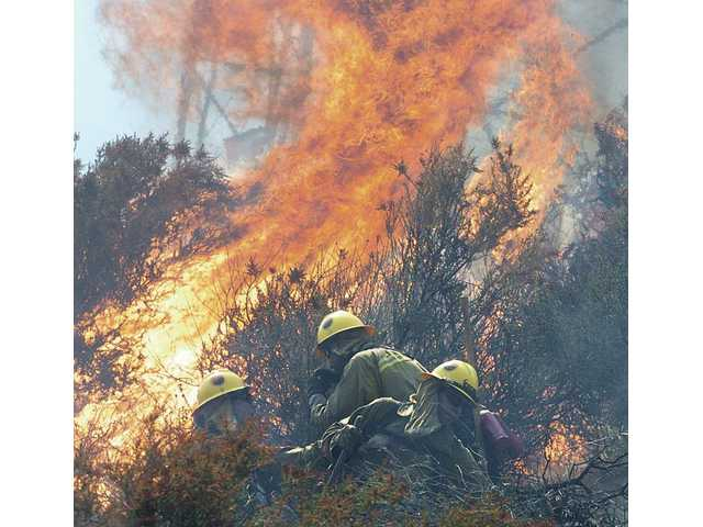Forestry hand crews retreat from a flare-up as they work to clear brush on the east side of a steep ridge where a 30-40-acre fire burned near homes located on La Salle Canyon Road near the Golden State (I-5) Freeway and the Calgrove Boulevard exit in Newhall on Friday afternoon. The fire was contained around 4 p.m.