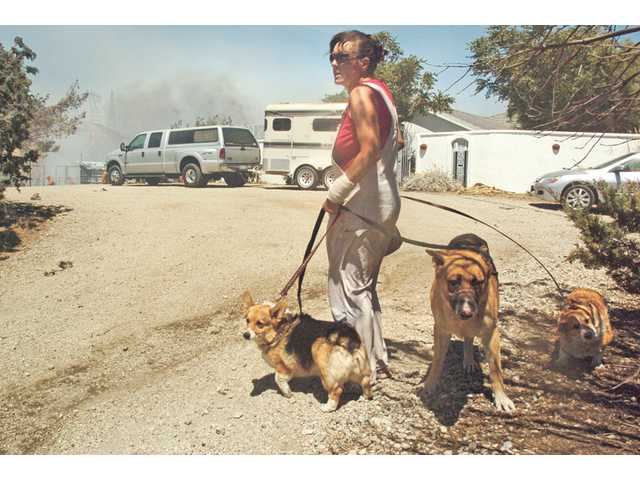A Leona Valley resident leaves with her dogs as flames climb the hill beneath her home on July 31.