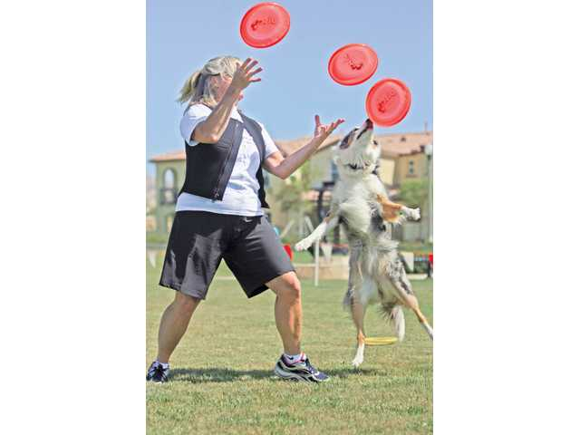 Whittier residents Jaeleen Sattler and Spark, a blue merle border collie, perform tricks for a group of locals at the Canines and Coffee event at Terry Miller Memorial Park in Valencia, which was hosted by Newhall Land and Lennar as part of the Awesometown Summer Celebration.