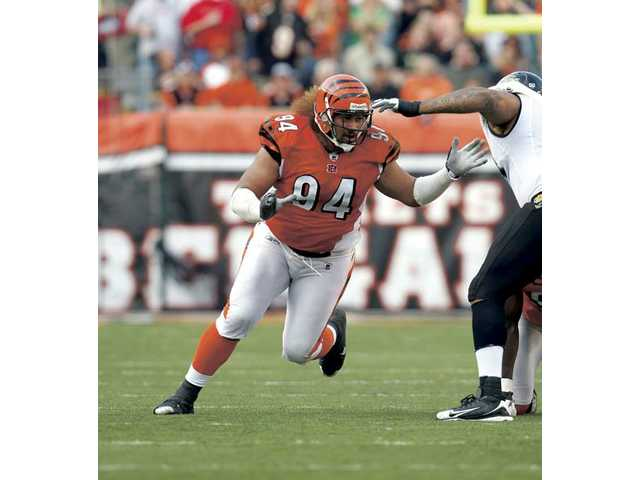 Former College of the Canyons defensive lineman Domata Peko is a key component of the Cincinnati Bengals' defense heading into 2010.