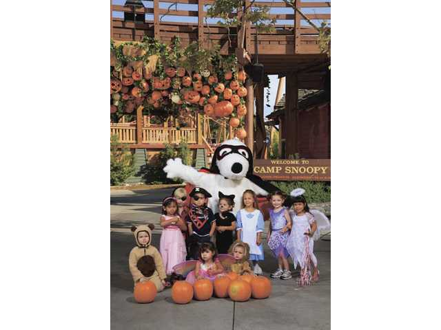 Despite the scares going on elsewhere at Knott's Berry Farm during its Halloween Haunt, little ones will find seasonal good times at Camp Snoopy.