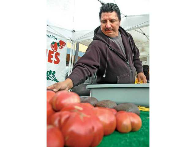 Arturo Ramirez, an Old Town Newhall Farmers' Market vendor, wipes down his avocadoes for sale, which are grown on his Santa Maria farm.
